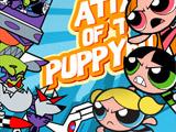 Powerpuff Girls Attack