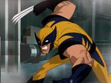 Wolverine Excape