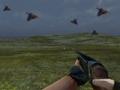 Bird Hunt Unity