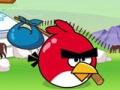 Angry Bird Journey