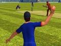 Campus Cricket