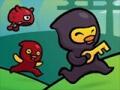 Ninja Ducks Adventure